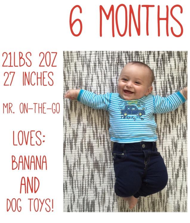 B 6 months
